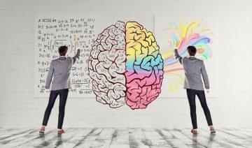 Счастье и два полушария головного мозга